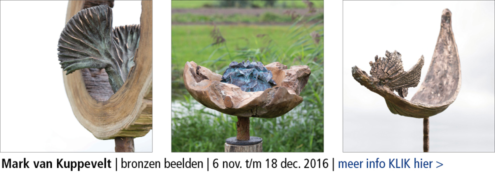 galerienijmegen_mark-van-kuppevelt