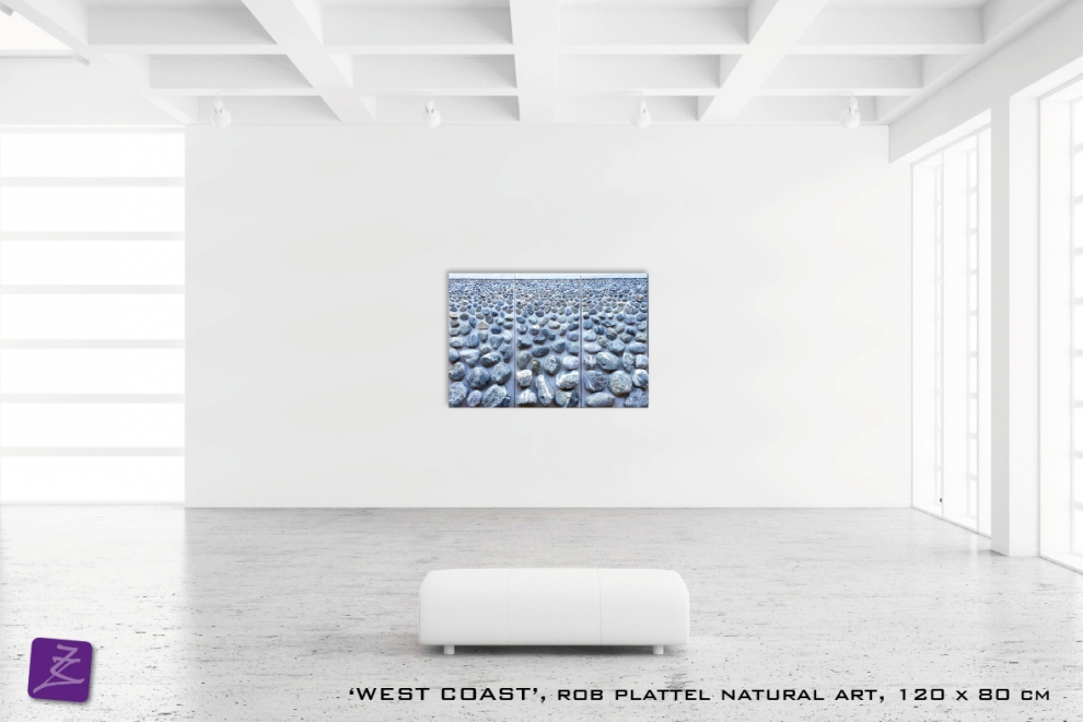 natural art Rob Plattel WEST COAST