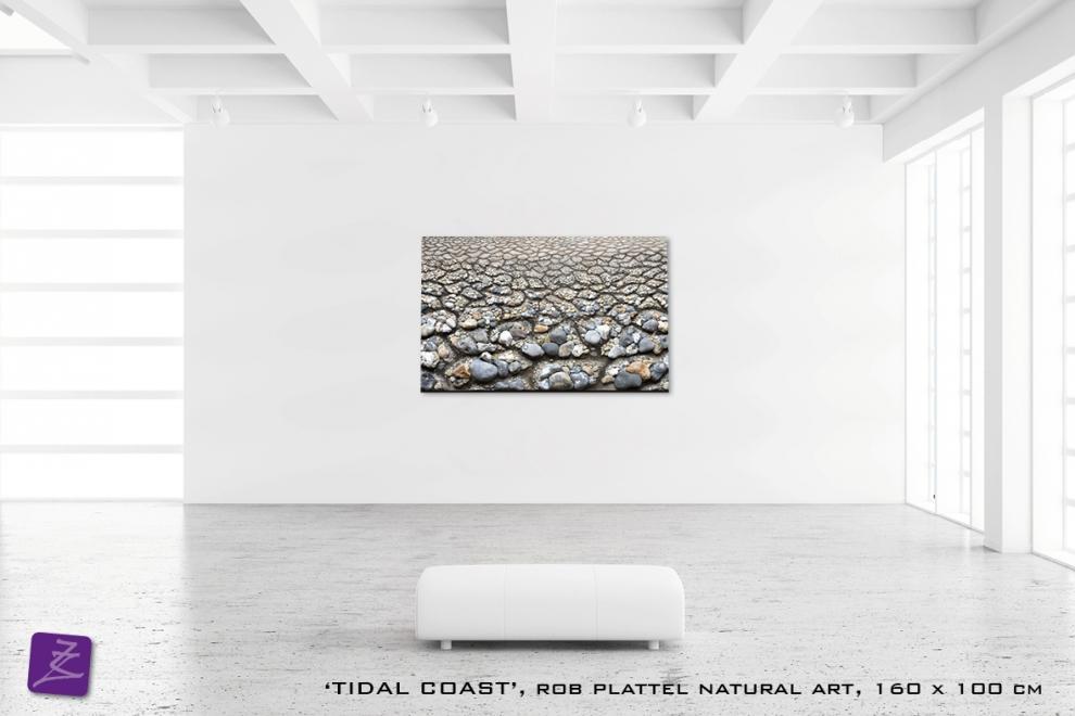 natural art Rob Plattel TIDAL COAST galerie Zeven Zomers